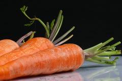 Tres zanahorias frescas Imagen de archivo