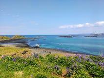 Treshnish öar, Skottland Arkivfoto