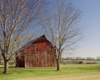 tress красного цвета амбара Стоковая Фотография