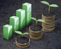 Tress растя на монетках стоковое изображение