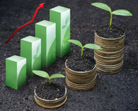 Tress growing on coins. With green graph / csr / sustainable development / economic growth stock photo