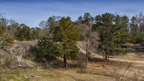 The Tress on the Ridge in the Park. `The Trees on the Ridge in the Park`, is a photo taken at the Flat Rock Park Park located in Muscogee County, located in royalty free stock image