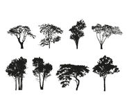 Tress Silhouette Vector Royalty Free Stock Photos
