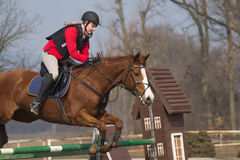 Young woman at equestrian race Stock Image