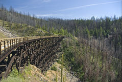 Trestle in Myra Canyon Royalty Free Stock Photos