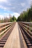 Trestle in the wild Royalty Free Stock Photos