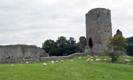 Tretower Castle Ruins Stock Photo