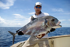 Trevally jack Stock Photography