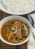Trevally jest fish curry Royalty Free Stock Photos