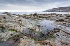 Trevaunance-Bucht Cornwall England Großbritannien Stockfoto