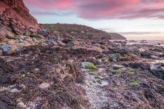 Trevellas-porth Sonnenuntergang, der in Richtung trevaunance Buchten in Cornwall England Großbritannien blickt Stockfoto