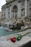 trevi фонтана Стоковое Фото