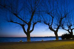 Trevignamopromenade op het meer in de winter bij de schemer royalty-vrije stock afbeelding