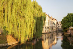 Treviso Royalty Free Stock Photo