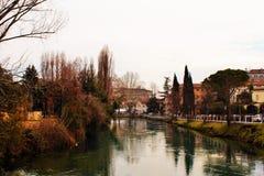 Treviso, een stad met vele stromen, die gastvrijheid aan talrijke diersoort geven die in kalmte onder mensen leeft royalty-vrije stock foto's