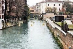 Italy, Treviso città d` arte. royalty free stock image