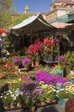 trevlig blommamarknad Arkivfoton