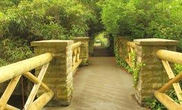 Trevlig bro i en parkera Royaltyfria Bilder