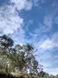 Trevlig clouddy dag Arkivfoto