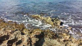 Trevlig dag på stranden Royaltyfria Bilder