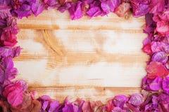 Trevlig förälskelsevykort- eller affischram av trevliga purpurfärgade sidor av bougainvillean på ljus lantlig wood backgound Royaltyfri Fotografi