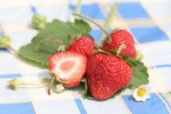 trevlig jordgubbe Arkivbild