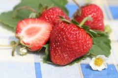 trevlig jordgubbe Royaltyfri Bild