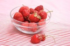 trevlig jordgubbe Royaltyfri Fotografi