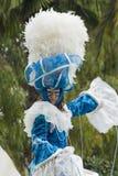 trevlig karneval Arkivfoton