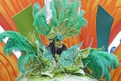 trevlig karneval Royaltyfria Bilder