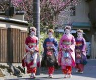 Trevlig kvinna fyra i Maiko kimonoklänning Arkivfoto