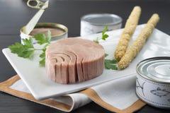 Trevlig maträtt av tonfisk royaltyfri foto