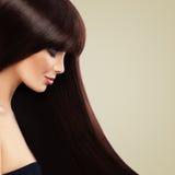 Trevlig modell med den härliga bruna frisyren sunt långt för hår royaltyfria bilder