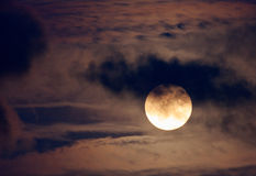 Trevlig natt som skjutas av fullmånen Royaltyfri Fotografi