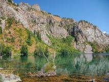 Trevlig naturflod Royaltyfri Fotografi