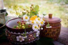 Trevlig ny mat och korg på gräset Royaltyfria Foton