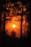 Trevlig och härlig solnedgång fotografering för bildbyråer