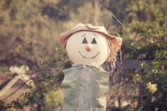 Trevlig Scarecrow Royaltyfri Foto