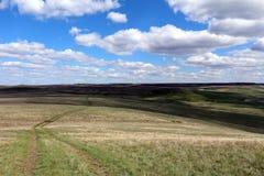 trevlig sikt av fältet med en väg Arkivfoto