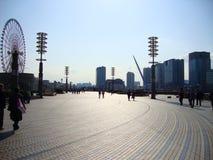 trevlig sikt på en parkera i tokyo royaltyfri fotografi