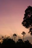 trevlig skysoluppgång för ljus natur Arkivbilder