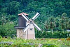 Trevlig väderkvarn i trädgården med kokospalmen Arkivbild