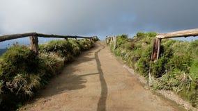 Trevlig väg l i en skog av Azoresna stock video