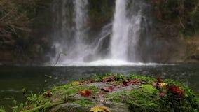 Trevlig vattenfalldetalj på skogen i Spanien i en molnig dag arkivfilmer