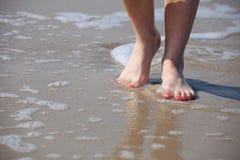 Trevliga ben i vatten Arkivfoto