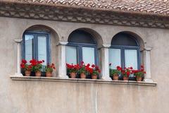 Trevliga fönster med pelargon blommar i en spansk stad Gerona Royaltyfri Fotografi
