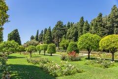 trevliga france Cimiez klosterträdgård - 12 Royaltyfri Foto