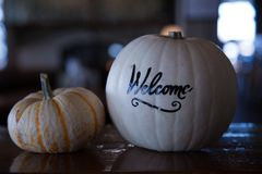 Trevliga halloween välkomnande pumpor stänger sig upp Royaltyfri Foto