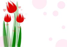 Trevliga röda tulpan för ferier Fotografering för Bildbyråer