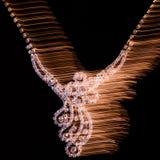 Trevliga smycken halsband Blandat ljus Svart bakgrund Royaltyfria Bilder